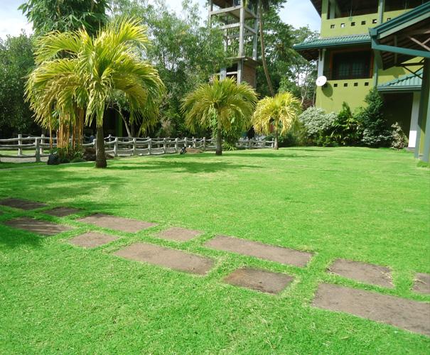 Hotel Green Garden | Charming hotel in Hikkaduwa, Sri Lanka